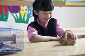 Schoolgirl petting pet rabbit in classroom