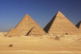 pic of camel-cart  - Great Pyramids of Giza - JPG