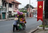 Selling Flowers In Vietnam