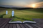 Book Concept Concept Landscape Young Boys Walking Through Field At Sunset In Summer