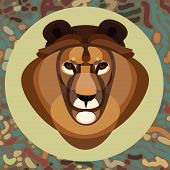 Lion head abstract on  backgrounds, vector illustration