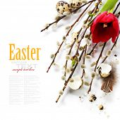 stock photo of quail egg  - Easter still life of quail eggs and spring flowers  - JPG