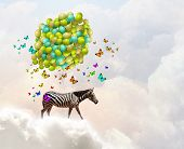 Fantasy image of zebra flying in sky on aerostat
