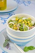 image of devilfish  - Cuttlefish salad with fresh fava beans and corn with fresh aromatic herbs in a salad bowl of white and blue colors - JPG