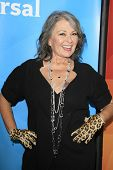 PASADENA - APR 8: Roseanne Barr at the NBC/Universal's 2014 Summer Press Day held at the Langham Hot