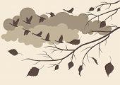 autumn birds fly south