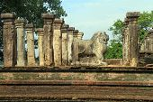pic of polonnaruwa  - Stone lion and ruins of Nissanka Mala palace in Polonnaruwa Sri Lanka - JPG