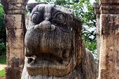 image of polonnaruwa  - Head of lion and columns of Nissanka Mala palace in Polonnaruwa Sri Lanka - JPG