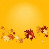 Yellow fall background with copy space.