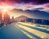 picture of toned  - Fantastic evening landscape in a colorful sunlight - JPG