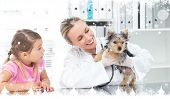 Composite image of a Veterinarian examining puppy with girl against snow falling