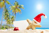 Starfish with a Santa hat and a blank banner behind it on a tropical beach