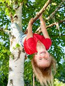 Little girl having fun playing on birch tree