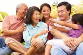 picture of multi-generation  - Multi Generation Family Playing Game In Park Together - JPG