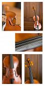 Violin Collage