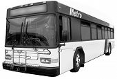 City Public Bus