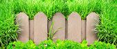 Summer background with old wooden fence and green grass
