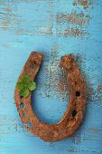 picture of wooden horse  - Old horse shoe - JPG