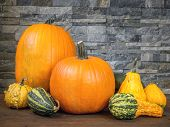 Pumpkins and various summer squashes over dark gray stone background
