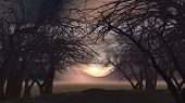 stock photo of moonlit  - 3D spooky Halloween landscape with trees against a moonlit sky - JPG