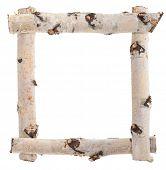 Frame of birch logs