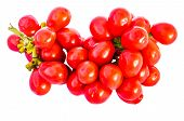 Tiliacora Triandra seeds  isolated on white with clipping path