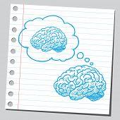 Brain thinking about brain