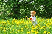 Girl In  Blossoming Field