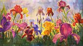 Illustration of Irises - imitation oil on canvas.