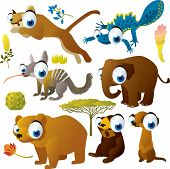 vector set of cartoon comic funny animals: puma, newt, elephant, numbat, grizzly, sunbear, meerkat