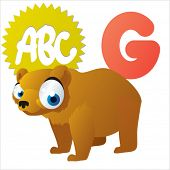 G is for Grizzly Bear