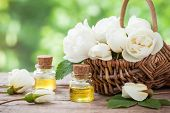 stock photo of bunch roses  - Wicker basket with white roses bunch and bottles of essential oil - JPG