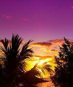 pic of nightfall  - Seascape Nightfall Evening  - JPG