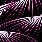 image of bend  - Digital art futuristic bending lines abstract geometric shapes pattern in vivi violet tones against black and white background - JPG