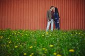 stock photo of amor  - Amorous couple in casualwear kissing on green lawn - JPG
