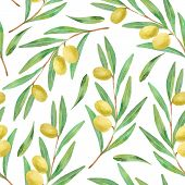 stock photo of olive branch  - Watercolor branches of olives seamless pattern - JPG
