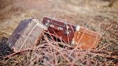 stock photo of old suitcase  - Two old vintage suitcases lie forgotten in a faded grass - JPG