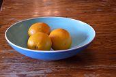 stock photo of valencia-orange  - Oranges in a blue bowl on kitchen table - JPG