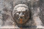 stock photo of lions-head  - head of lion a fountain in rome - JPG