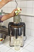 picture of juicer  - Juicer for making apple and carrot juice - JPG