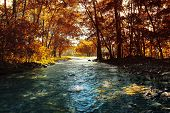 Autumn trees and cold river with clear water