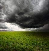 Storm dark clouds flying over field with green grass