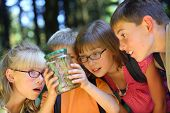 stock photo of school child  - Children looking at bug in jar - JPG