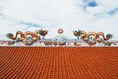 Dragon Status On Roof