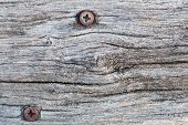 Screws And Wood