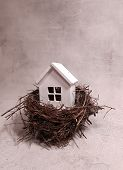 Buying, Selling A House, A White House In A Nest. House Is An Investment. poster