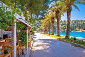 Tourist Waterfront Street In Cavtat View, Adriatic Coastline In Dalmatia Region Of Croatia poster