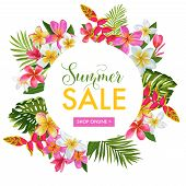 Summer Sale Tropical Banner. Seasonal Promotion With Plumeria Flowers And Palm Leaves. Floral Discou poster