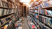 Atmospheric Old Library With Books. Cozy Light Retro Library. Books Concept. poster
