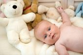 Baby Boy And His White Teddy Bear. Childhood And Curiosity Concept. Baby Lying On White Duvet. Infan poster
